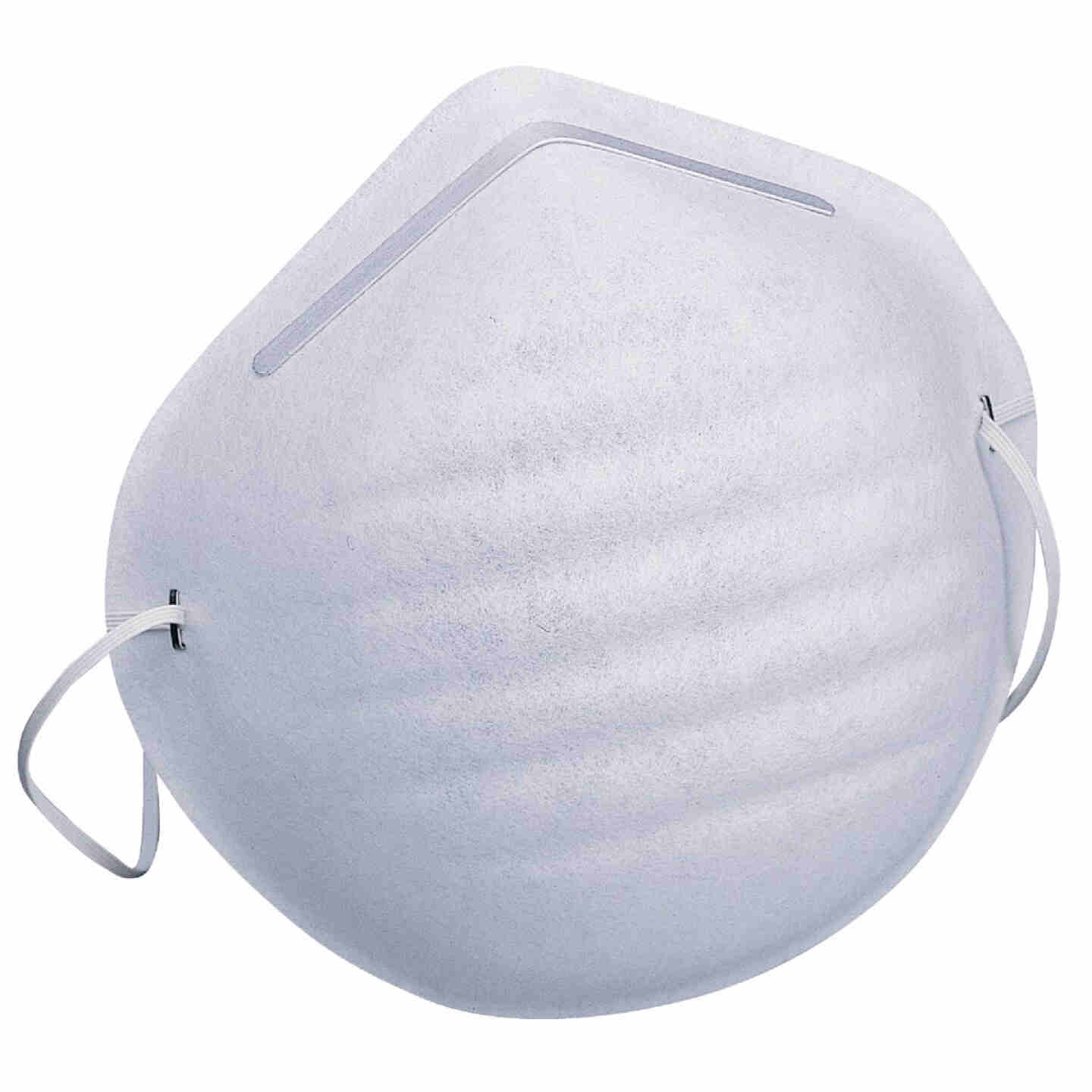 Safety Works Disposable Dust Mask (5-Pack) Image 1