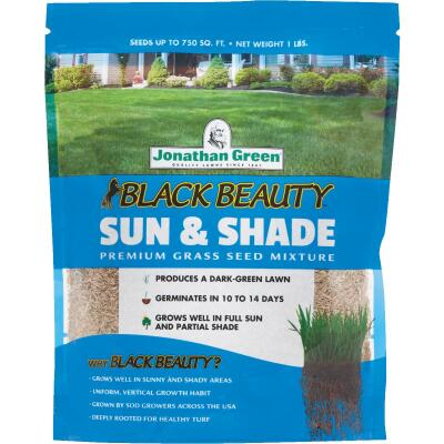 Jonathan Green Black Beauty 1 Lb. 375 Sq. Ft. Coverage Sun & Shade Grass Seed