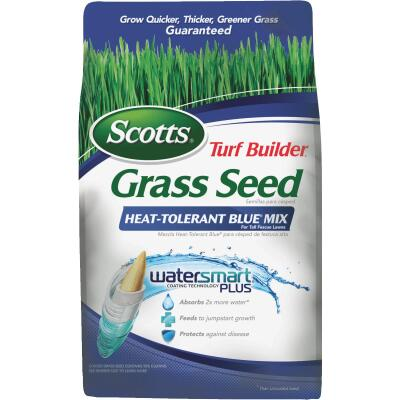 Scotts Turf Builder 3 Lb. 750 Sq. Ft. Coverage Heat Tolerant Blue Grass Seed