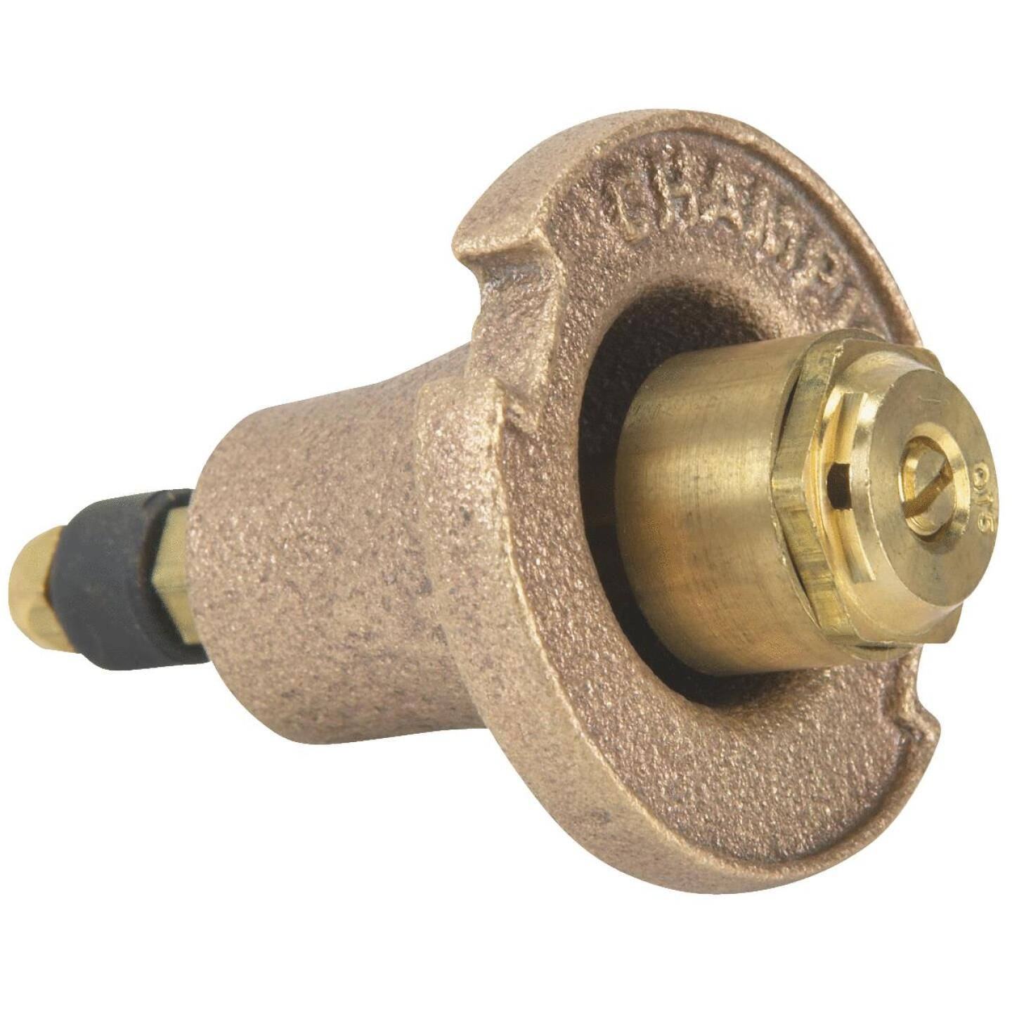 Champion 1.25 In. Quarter Circle Brass Pop-Up Sprinkler with Brass Nozzle Image 1